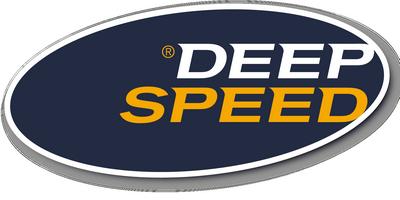 DeepSpeed